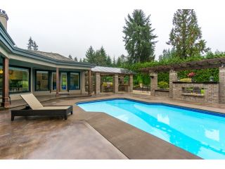 Photo 3: 2514 EAST Road: Anmore House for sale (Port Moody)  : MLS®# R2009355