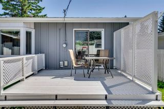 Photo 37: 712 MAPLETON Drive SE in Calgary: Maple Ridge Detached for sale : MLS®# A1018735