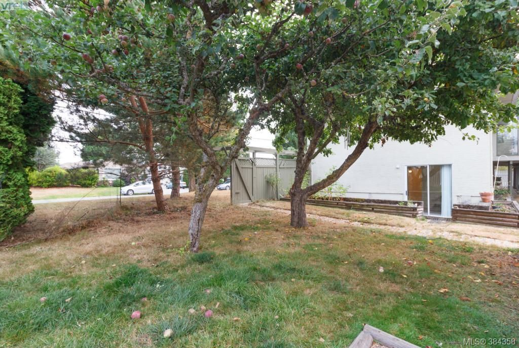 Photo 17: Photos: 2048 Melville Dr in SAANICHTON: Si Sidney North-East House for sale (Sidney)  : MLS®# 772514