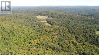 Photo 12: 300 HAMILTON LAKE Road in South River: Vacant Land for sale : MLS®# 40159931