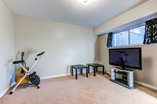 Photo 24: 414 WILLOW Court in Edmonton: Zone 20 Townhouse for sale : MLS®# E4243142