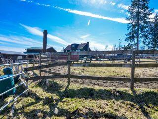 Photo 53: 3282 MACAULAY ROAD in BLACK CREEK: CV Merville Black Creek House for sale (Comox Valley)  : MLS®# 753672