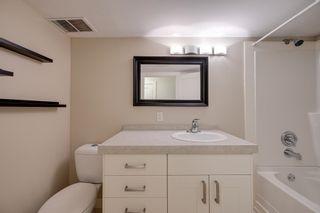 Photo 28: 11523 51 Avenue in Edmonton: Zone 15 House for sale : MLS®# E4266418