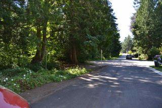 Photo 4: 12755 14 Avenue in Surrey: Crescent Bch Ocean Pk. Land for sale (South Surrey White Rock)  : MLS®# R2479842