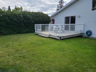 Photo 14: 7920 46 Avenue NW in Calgary: Bowness Detached for sale : MLS®# A1146103