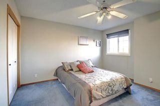 Photo 22: 129 Coral Shores Bay NE in Calgary: Coral Springs Detached for sale : MLS®# A1151471