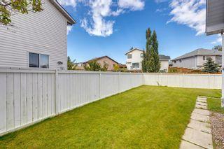 Photo 35: 8 Applecrest Crescent SE in Calgary: Applewood Park Detached for sale : MLS®# A1148211