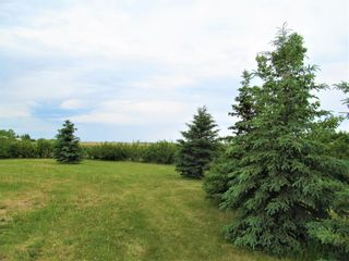 Photo 8: 251003 Rge Rd 281 in Rural Rocky View County: Rural Rocky View MD Detached for sale : MLS®# A1062689