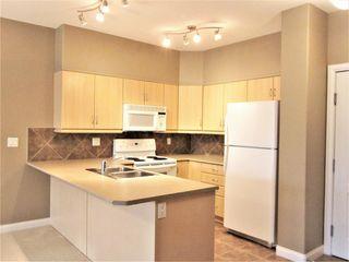 Photo 13: 410 1406 HODGSON Way in Edmonton: Zone 14 Condo for sale : MLS®# E4223592