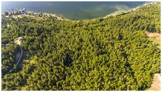 Photo 10: 2750 Canoe Beach Drive in Salmon Arm: Vacant Land for sale (NE Salmon Arm)  : MLS®# 10217002