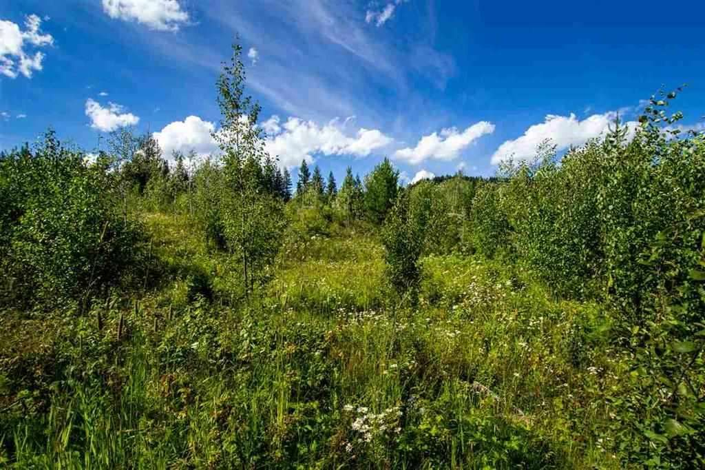 Main Photo: LOT 12 CANIM VIEW Drive in Canim Lake: Canim/Mahood Lake Land for sale (100 Mile House (Zone 10))  : MLS®# R2562582