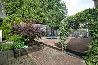 Photo 3: 931 COTTONWOOD Avenue in Coquitlam: Coquitlam West House for sale : MLS®# R2558688