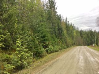 Photo 14: 3,4,6 Armstrong Road in Eagle Bay: Vacant Land for sale : MLS®# 10133907