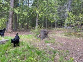 Photo 28: Lot 3 HIGHWAY 3A (NINE MILE) in Nelson: Vacant Land for sale : MLS®# 2455963