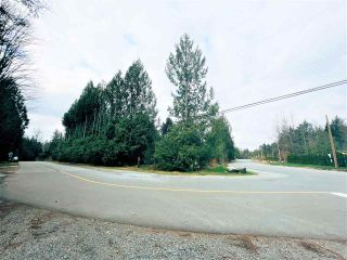 Photo 11: 24195 FERN Crescent in Maple Ridge: Silver Valley Land for sale : MLS®# R2558990