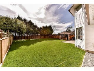 """Photo 18: 15498 91A Street in Surrey: Fleetwood Tynehead House for sale in """"BERKSHIRE PARK area"""" : MLS®# F1435240"""