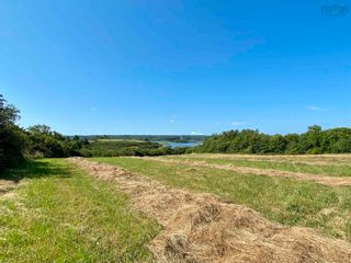 Photo 10: 11.6 acres East Tracadie Road in East Tracadie: 301-Antigonish Vacant Land for sale (Highland Region)  : MLS®# 202122282