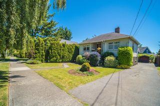 Photo 1: 1615 Myrtle Ave in : Vi Oaklands House for sale (Victoria)  : MLS®# 877676