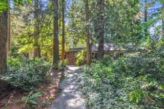 Photo 1: 4193 206A Street in Langley: Brookswood Langley House for sale : MLS®# R2457676