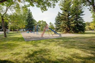 Photo 33: 2446 28 Street SE in Calgary: Southview Detached for sale : MLS®# A1146212