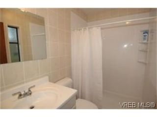 Photo 7: 6819 Wallace Dr in BRENTWOOD BAY: CS Brentwood Bay House for sale (Central Saanich)  : MLS®# 521287