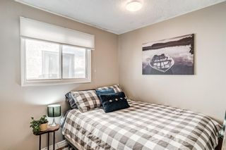 Photo 25: 508 Mckinnon Drive NE in Calgary: Mayland Heights Detached for sale : MLS®# A1154496