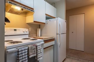 Photo 5: 213 585 Dogwood St in : CR Campbell River Central Condo for sale (Campbell River)  : MLS®# 876595