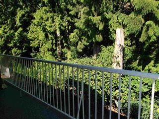 """Photo 38: 9748 117B Street in Surrey: Royal Heights House for sale in """"Royal Heights"""" (North Surrey)  : MLS®# R2603674"""