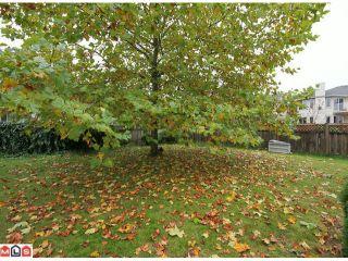 """Photo 9: 26916 27B AV in Langley: Aldergrove Langley House for sale in """"Betty Gilbert"""" : MLS®# F1126568"""