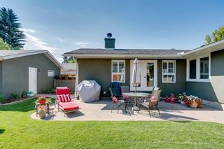 Photo 37: 3634 10 Street SW in Calgary: Elbow Park Detached for sale : MLS®# A1060029