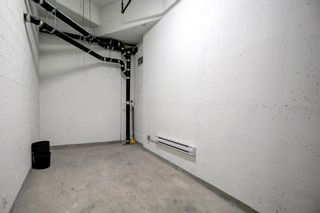 Photo 41: 611 738 1 Avenue SW in Calgary: Eau Claire Apartment for sale : MLS®# A1124476