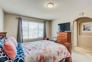Photo 23: 137 Saddletree Close NE in Calgary: Saddle Ridge Detached for sale : MLS®# A1091689