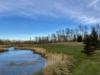 Photo 1: 49101 Range Road 233: Rural Leduc County Rural Land/Vacant Lot for sale : MLS®# E4219459