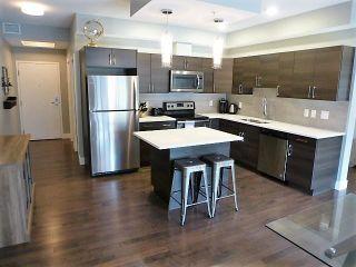 Photo 11: 305 10006 83 Avenue in Edmonton: Zone 15 Condo for sale : MLS®# E4255743