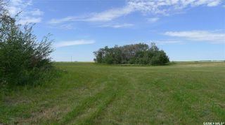Photo 13: Mapes Acreage in Dundurn: Lot/Land for sale (Dundurn Rm No. 314)  : MLS®# SK821346