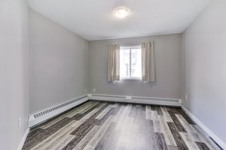 Photo 26: 7 10331 106 Street in Edmonton: Zone 12 Condo for sale : MLS®# E4246489