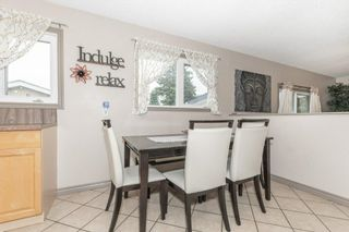 Photo 12: 703 KNOTTWOOD Road S in Edmonton: Zone 29 House for sale : MLS®# E4261398