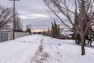 Photo 49: 278 COVENTRY Court NE in Calgary: Coventry Hills Detached for sale : MLS®# C4219338