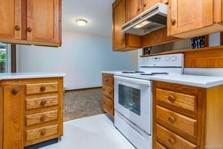 Photo 20: 3341 Egremont Rd in Cumberland: CV Cumberland House for sale (Comox Valley)  : MLS®# 879000