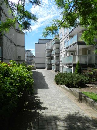 Photo 11: 209 14377 103 Avenue in Surrey: Whalley Condo for sale (North Surrey)  : MLS®# R2181814