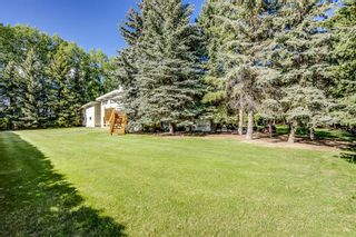 Photo 24: 19 Butte Hills Court in Rural Rocky View County: Rural Rocky View MD Detached for sale : MLS®# A1118338
