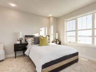 Photo 14: 22524 80 Avenue in Edmonton: Zone 58 House for sale : MLS®# E4236820