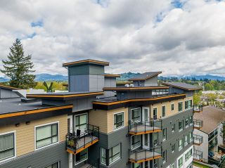 Photo 30: 304 33568 GEORGE FERGUSON Way in Abbotsford: Central Abbotsford Condo for sale : MLS®# R2607741