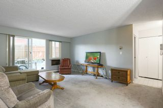 """Photo 2: 103 12096 222 Street in Maple Ridge: West Central Condo for sale in """"Canuck Plaza"""" : MLS®# R2521052"""