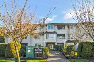 """Photo 1: 302 6440 197 Street in Langley: Willoughby Heights Condo for sale in """"THE KINGSWAY"""" : MLS®# R2420735"""