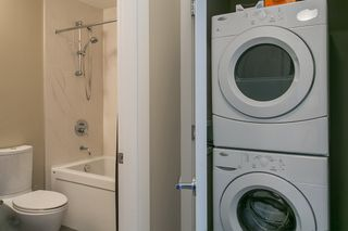 """Photo 14: 303 4710 HASTINGS Street in Burnaby: Capitol Hill BN Condo for sale in """"ALTEZZA"""" (Burnaby North)  : MLS®# R2053394"""