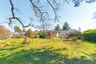 Photo 21: 3372 Henderson Rd in : OB Henderson House for sale (Oak Bay)  : MLS®# 870559