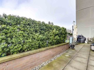 """Photo 17: 102 2349 WELCHER Avenue in Port Coquitlam: Central Pt Coquitlam Condo for sale in """"ALTURA"""" : MLS®# R2529816"""