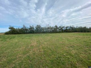 Photo 30: TWP RD 583 Range Rd 271: Rural Westlock County Rural Land/Vacant Lot for sale : MLS®# E4218433