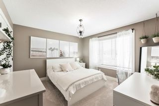 Photo 22: 815 Coopers Square SW: Airdrie Detached for sale : MLS®# A1109868